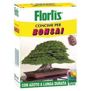 Limone caviale rosso fingerlime sanguinea vendita piante for Bonsai limone vendita