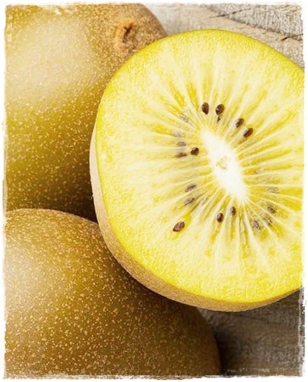 kiwi giallo golden