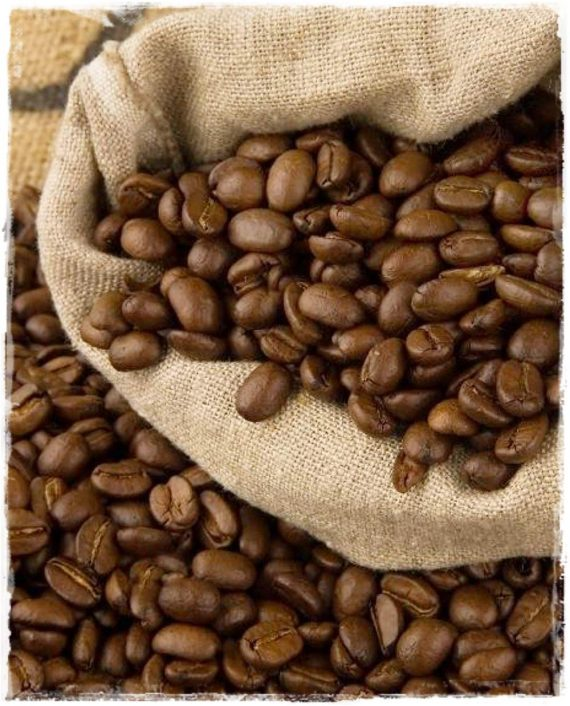 coffea arabica caffè