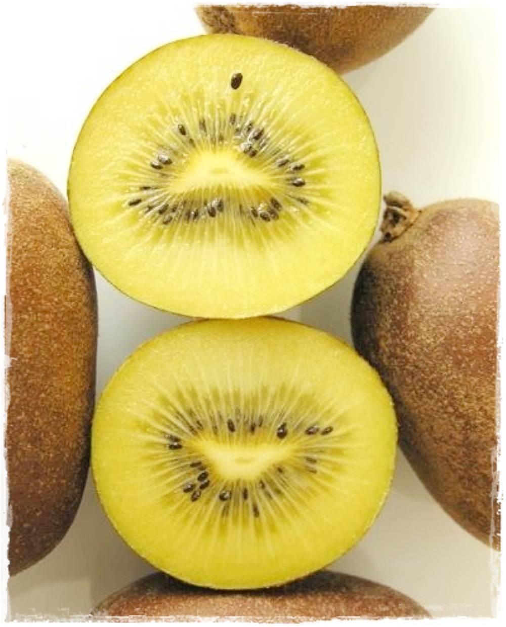 Kiwi giallo 39 golden delight 39 vendita piante online for Kiwi giallo piante acquisto