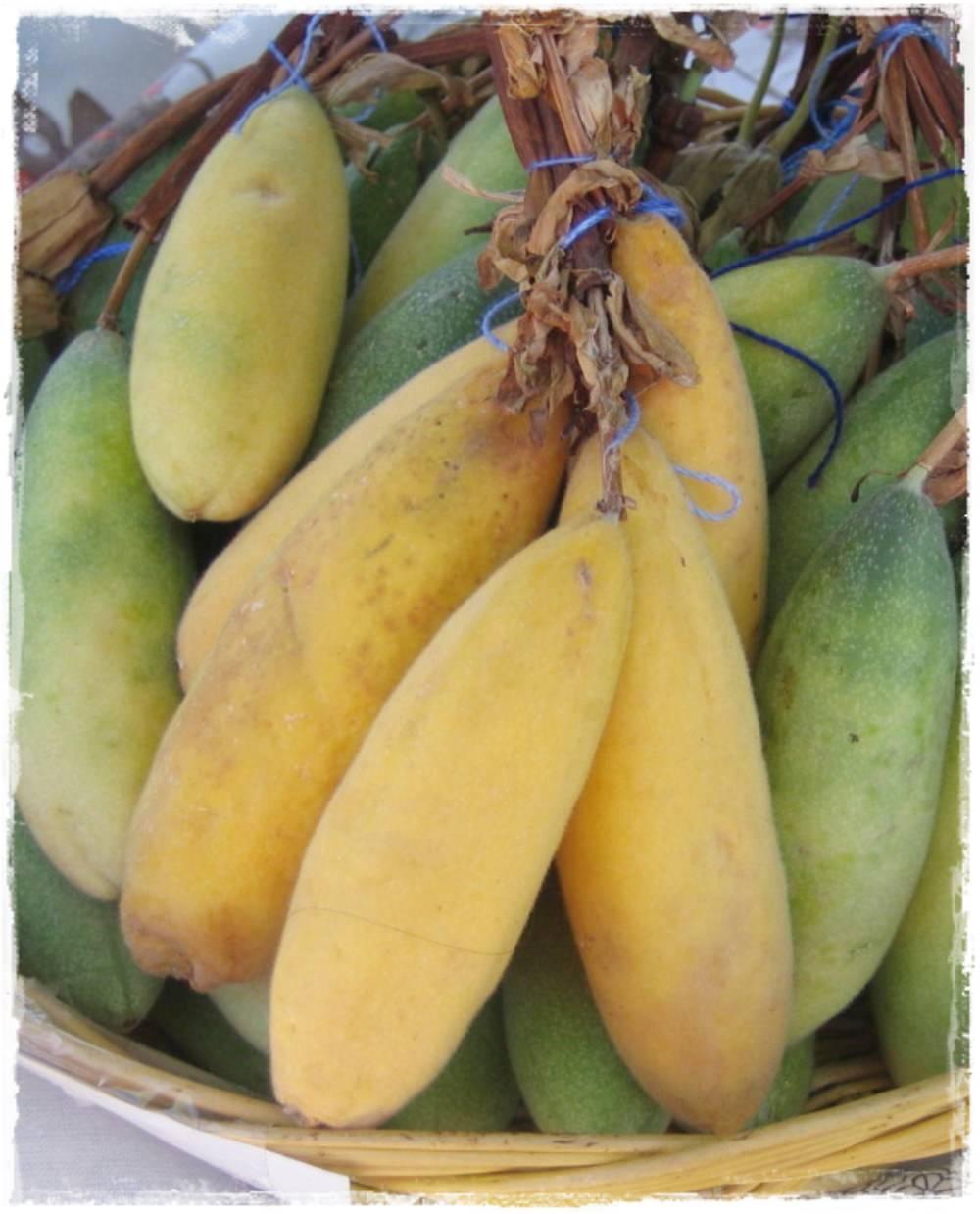 banana passionfruit passion FRUIT passiflora mollissima edible 50 seeds