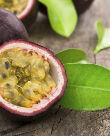 Passiflore Passion Fruit